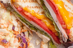 Grilled turkey and cheese panini Stock Image