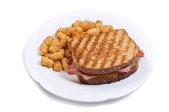 Grilled turkey with tater tots Royalty Free Stock Photo