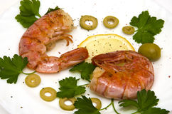 Grilled two large shrimp on round white plate stock photo