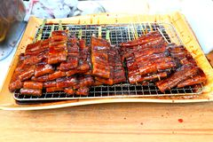 Grilled Unagi , japanese Seafood Stock Images