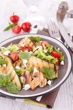 Grilled vegetable salad Stock Photography