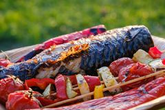 Grilled vegetable skewers and fish of mackerel in a herb marinade on a plate, onion, pepper zucchini tomato roasted barbecue. Grilled vegetable skewers and fish stock photos
