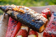 Grilled vegetable skewers and fish of mackerel in a herb marinade on a plate, onion, pepper zucchini tomato roasted barbecue. Grilled vegetable skewers and fish stock image