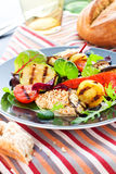 Grilled vegetables and chicken Royalty Free Stock Photos