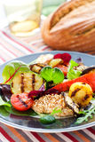 Grilled vegetables and chicken Royalty Free Stock Photography