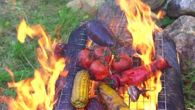 Grilled vegetables on the fire in nature stock footage