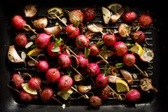 Grilled vegetables, grilled radish skewers with herbs and spices on a grill plate, top view,. Vegetarian food royalty free stock photography
