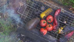 Grilled vegetables top view stock video footage