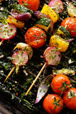Grilled veggie skewers with cherry tomatoes, radishes, peppers and onions with fresh dill on a grill pan Stock Photos