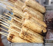 Grilled White Corn Cobs Stock Photos