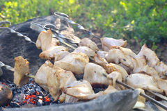 Grilled White Meat Royalty Free Stock Images