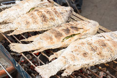 Grilled white snapper fish coated rock salt Stock Photography