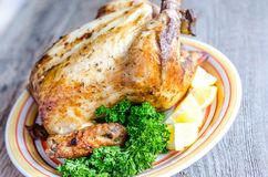 Grilled whole chicken Stock Photos