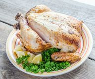 Grilled whole chicken Stock Images