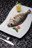 Grilled whole dorado fish on the white plate Royalty Free Stock Image