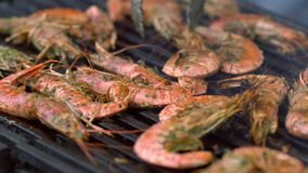 Grilled whole fresh pink prawns on the griddle stock footage