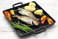 Grilled whole rainbow trout with vegetables Royalty Free Stock Image