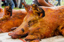 Grilled whole roasted pig Spit roasting is a traditional Stock Image