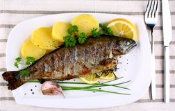 Grilled whole trout with potato, lemon and garlic royalty free stock image