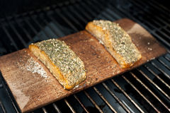 Grilled Wild Salmon Stock Photography