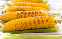 Grilled young corns Royalty Free Stock Photo