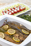 Grilled young mackerels in marinade Stock Photos