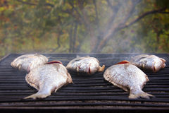 Grillen der Fische auf Grill Stockfotos
