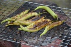 Grillen von grünen Paprikas Stockfoto