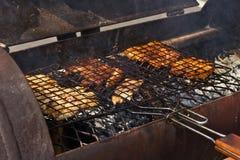 Griller des poissons de tanches Image libre de droits