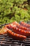 Griller des saucisses Images stock