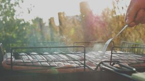 Griller des saucisses sur le gril de barbecue Les saucisses de proc grillant sur un BBQ portatif avec des saucisses, se ferment d clips vidéos