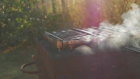 Griller des saucisses sur le gril de barbecue Les saucisses de proc grillant sur un BBQ portatif avec des saucisses, se ferment d banque de vidéos