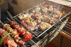 Griller le poulet sur le gril de barbecue Photographie stock libre de droits