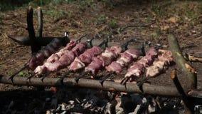 Grillez, en faisant frire la viande fraîche, barbecue de poulet, saucisse, chiche-kebab, hamburger, les légumes, BBQ, barbecue, f clips vidéos