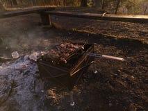 Grillez, en faisant frire la viande fra?che, barbecue de poulet, saucisse, chiche-kebab, hamburger, les l?gumes, BBQ, barbecue, f photo libre de droits