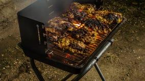 grillfest 3 Fotografering för Bildbyråer