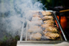 grillfest Royaltyfri Foto