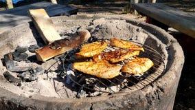 Grillfest av fega stycken på den upphettade konkreta ugnen för kol i en härlig solig dag bredvid en sjö stock video
