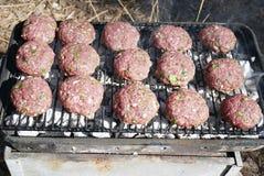 Grillfest för en picknick Arkivfoto