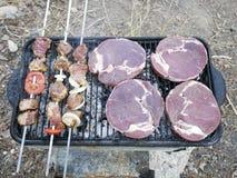 Grillfest för en picknick Royaltyfri Bild
