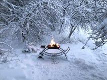Grillfest i snöig skog i vintertid royaltyfri bild