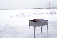 Grillfest som lagas mat för att laga mat på gallret Royaltyfria Bilder