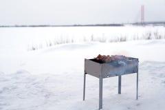 Grillfest som lagas mat för att laga mat på gallret Royaltyfri Fotografi