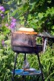 grillfester Royaltyfria Bilder