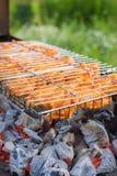 grillfesthöna Arkivbilder