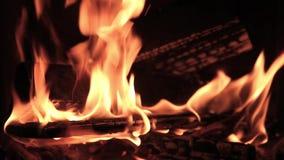 Grillfleisch auf dem Feuer unge?ffnet Sommerpicknick im Land stock video