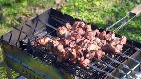 Grillfleisch auf dem Feuer unge?ffnet Sommerpicknick im Land stock footage