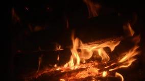 Grillfleisch auf dem Feuer unge?ffnet Sommerpicknick im Land stock video footage
