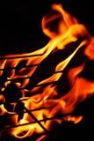 Grillin de Flamin Foto de Stock Royalty Free