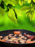 Grilling. Summer grilling in nature. Roasted fresh meat Stock Photo